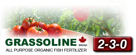 2-3-0 Organic Fish Fertilizer