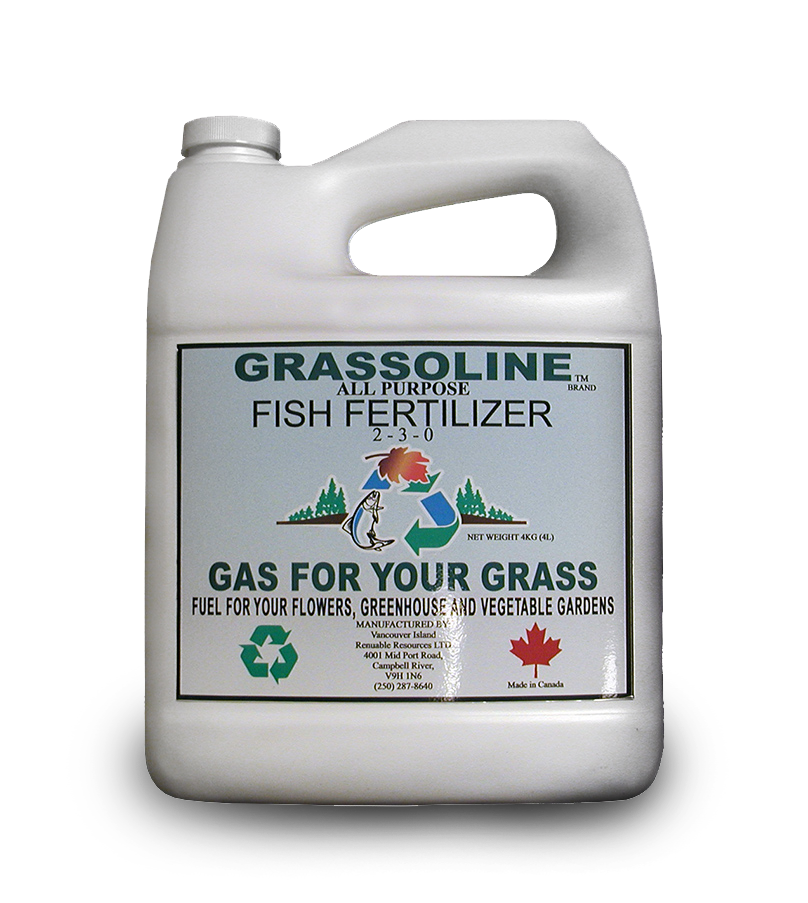 2 3 0 organic liquid fish fertilizer 4 litre grassoline for Liquid fish fertilizer