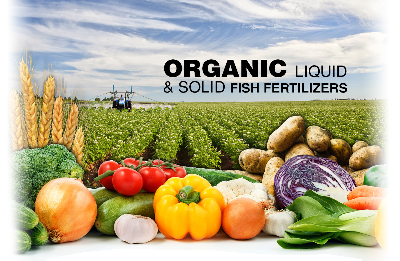 Organic Fish Fertilizer